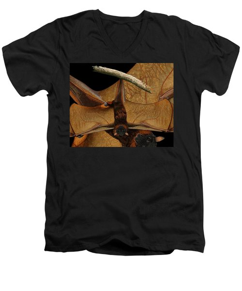 Little Red Flying Fox 2 Men's V-Neck T-Shirt