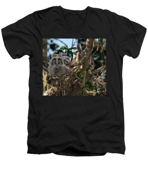 Long-eared Owl And Owlets Men's V-Neck T-Shirt