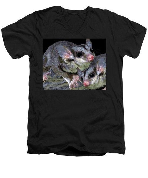 Mahogany Glider 1 Men's V-Neck T-Shirt