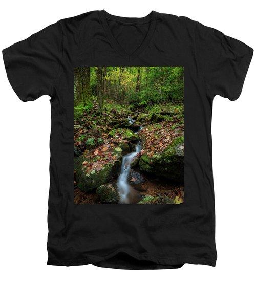 Mountain Stream - Blue Ridge Parkway Men's V-Neck T-Shirt