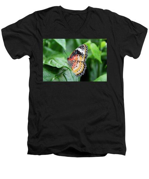 Multi Colored Butterfly Men's V-Neck T-Shirt
