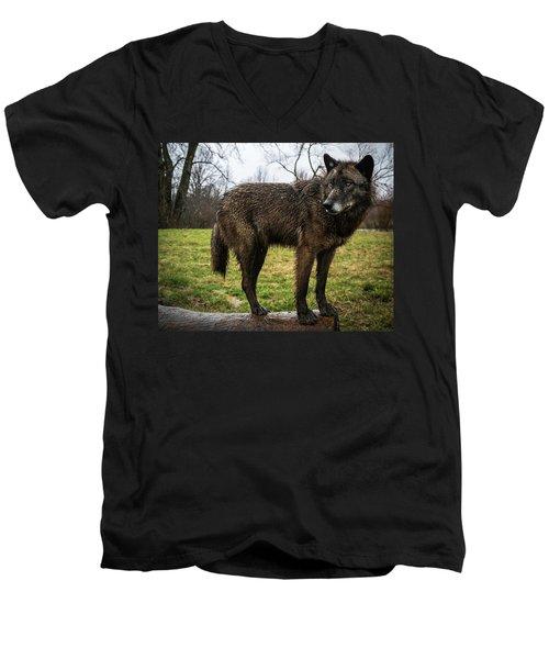 Niko Men's V-Neck T-Shirt
