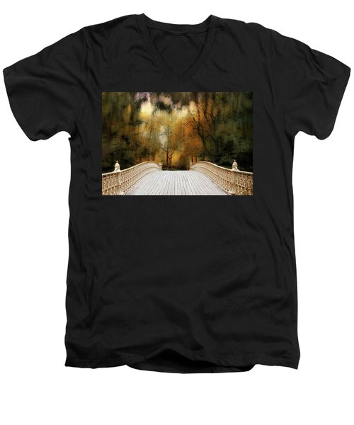 Pine Bank Arch In Autumn Men's V-Neck T-Shirt