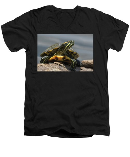 Portrait Of A Turtle Men's V-Neck T-Shirt