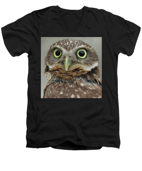 Portrait Of Burrowing Owl Men's V-Neck T-Shirt