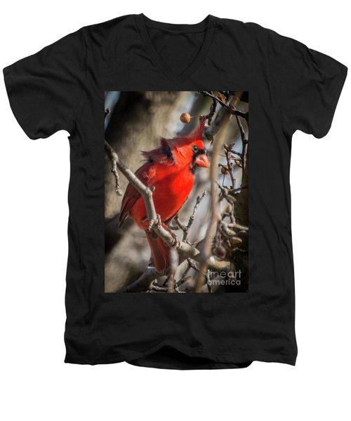Pretty Boy Men's V-Neck T-Shirt