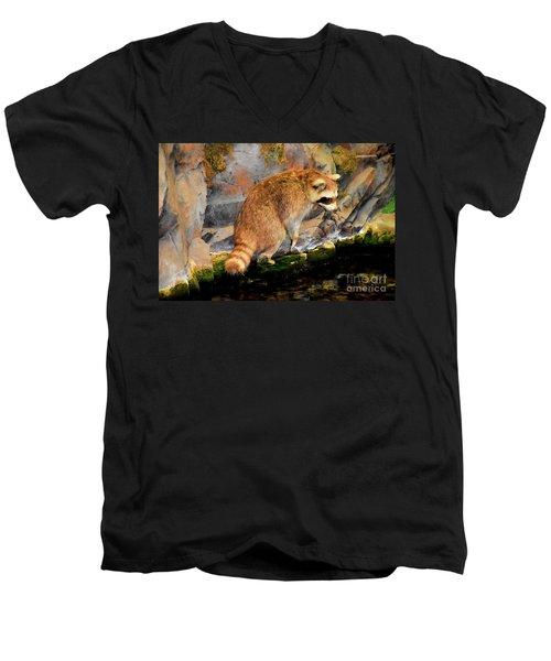 Raccoon 609 Men's V-Neck T-Shirt