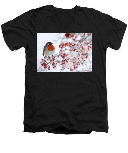 Robin And Berries Men's V-Neck T-Shirt