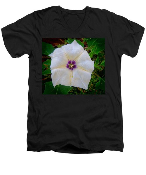Men's V-Neck T-Shirt featuring the photograph Sacred Datura - Full Bloom by Judy Kennedy