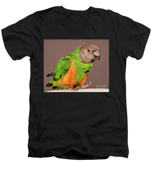 Senegal Parrot Men's V-Neck T-Shirt