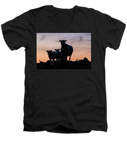 Men's V-Neck T-Shirt featuring the photograph Sheep Family by Anjo Ten Kate