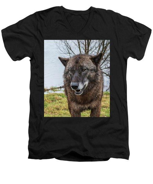 Smiling Men's V-Neck T-Shirt