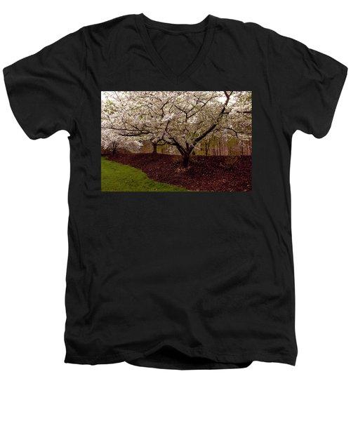 Snowy Cherry Blossoms Men's V-Neck T-Shirt