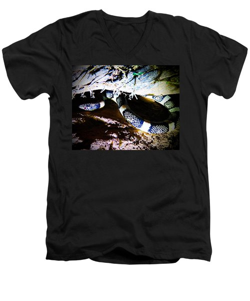 Men's V-Neck T-Shirt featuring the photograph Sonoran Desert Longnosed Snake by Judy Kennedy