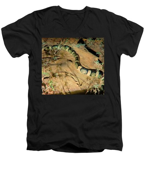 Men's V-Neck T-Shirt featuring the photograph Sonoran Desert Longnosed Snake Vintage by Judy Kennedy
