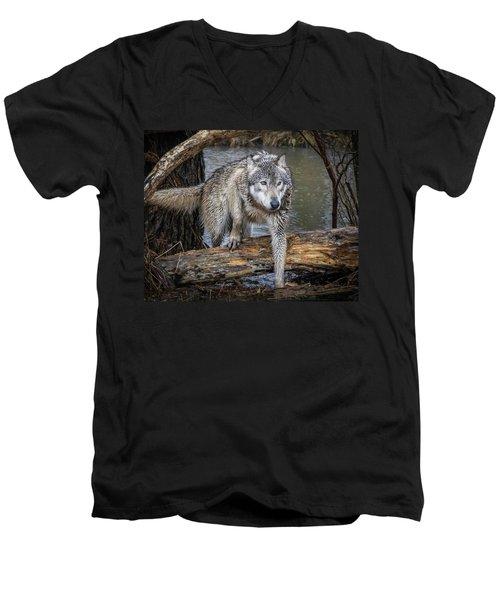 Stepping Over Men's V-Neck T-Shirt