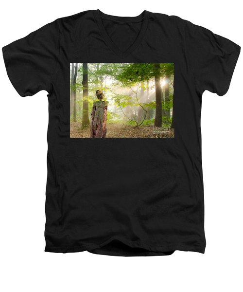 The Enchanted Forrest Men's V-Neck T-Shirt