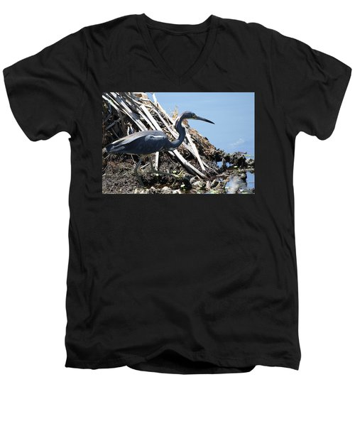 Tri-colored Heron 40312 Men's V-Neck T-Shirt