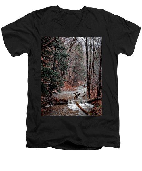 Winter Woods Men's V-Neck T-Shirt