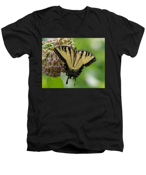 Yellow Swallowtail Butterfly Men's V-Neck T-Shirt