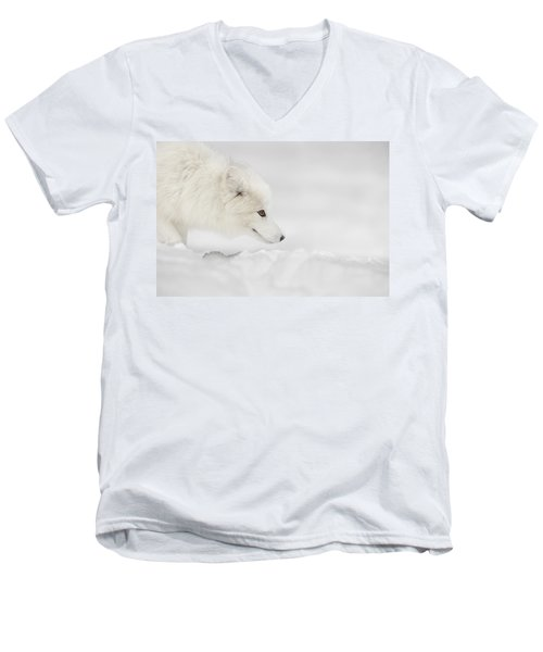 Arctic Fox Men's V-Neck T-Shirt