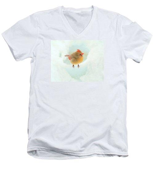 Baby Female Cardinal Men's V-Neck T-Shirt by Janette Boyd