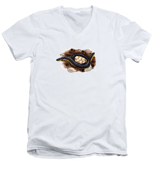 Caecilian Men's V-Neck T-Shirt by Cindy Hitchcock