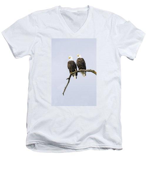 Majestic Beauty 2 Men's V-Neck T-Shirt by David Lester