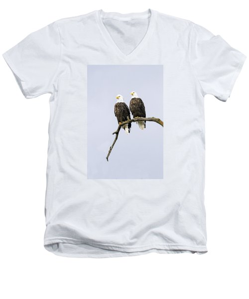 Majestic Beauty 2 Men's V-Neck T-Shirt