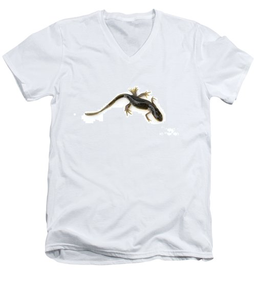 Mutated Eastern Newt Men's V-Neck T-Shirt by Lawrence Lawry