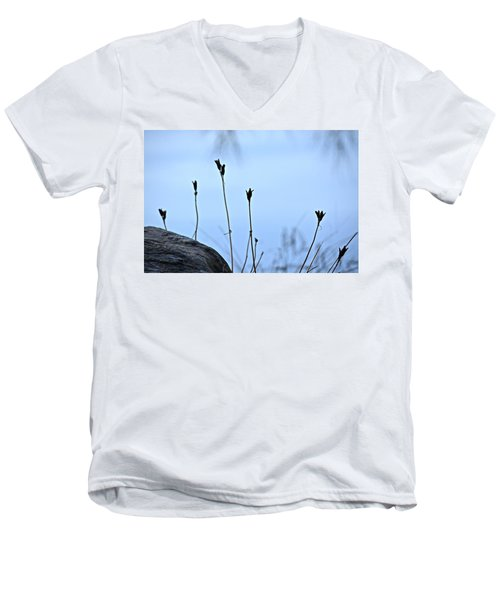 Pods On Pond Men's V-Neck T-Shirt