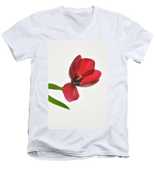 Red Transparent Tulip Men's V-Neck T-Shirt