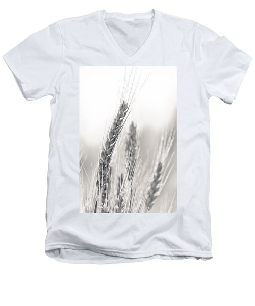 Wheat Men's V-Neck T-Shirt