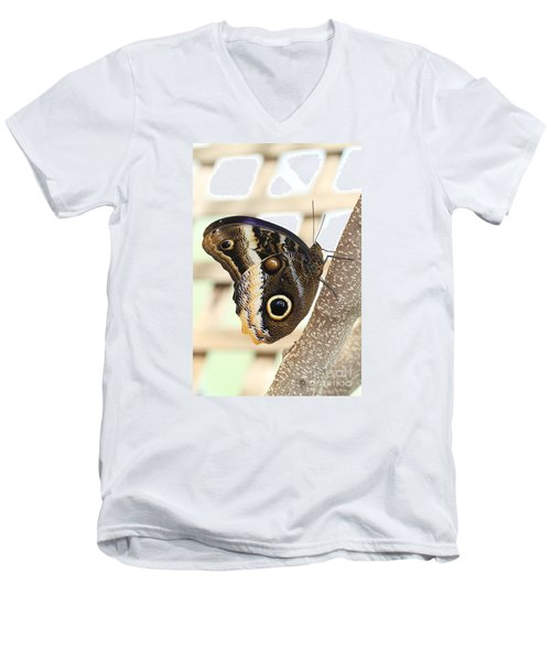 Yellow-edged Giant Owl Butterfly #4 Men's V-Neck T-Shirt by Judy Whitton