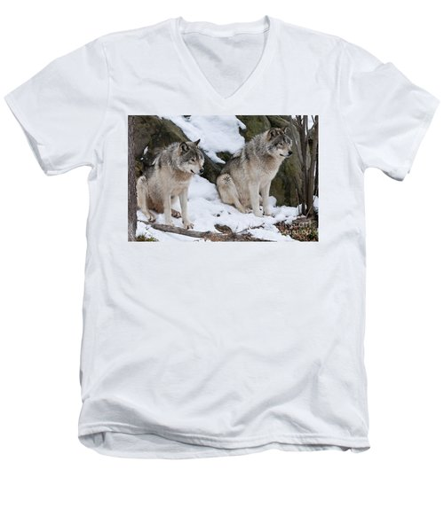 Timber Wolves Men's V-Neck T-Shirt