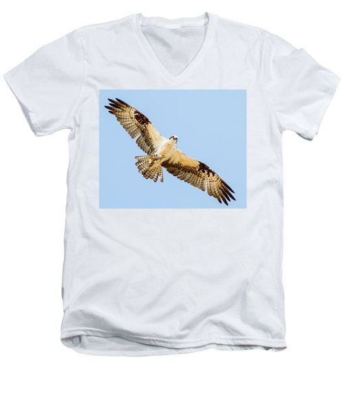 An Osprey Feeding On A Trout Men's V-Neck T-Shirt by Brian Williamson