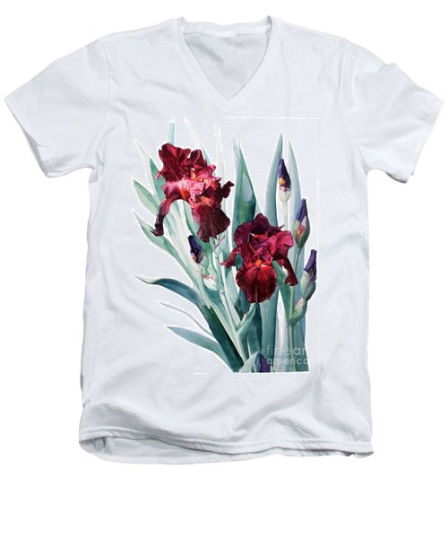 Dark Red Tall Bearded Iris Donatello Men's V-Neck T-Shirt