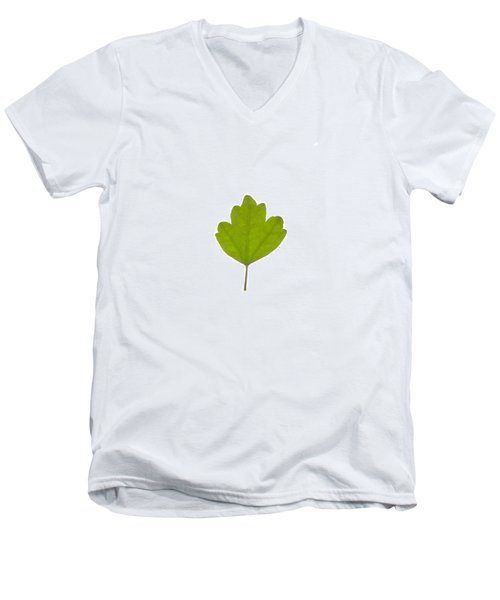 Leaf Men's V-Neck T-Shirt