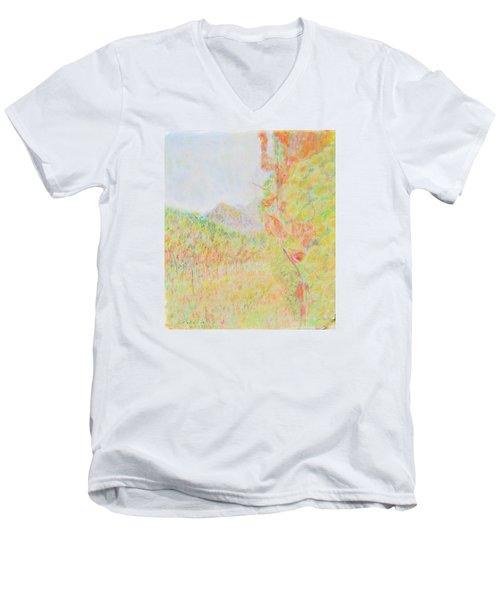 California Vineyard Men's V-Neck T-Shirt