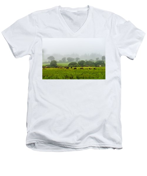 Cows At Rest Men's V-Neck T-Shirt