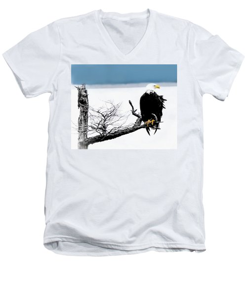 Elegance In The Morning Men's V-Neck T-Shirt