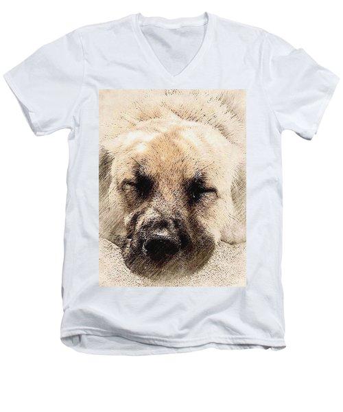 Snooze Men's V-Neck T-Shirt