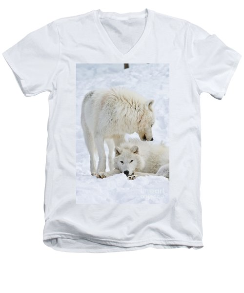 Arctic Wolves Men's V-Neck T-Shirt
