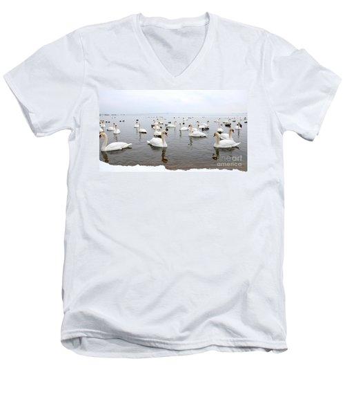 60 Swans A Swimming Men's V-Neck T-Shirt