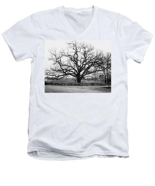 A Bare Oak Tree Men's V-Neck T-Shirt