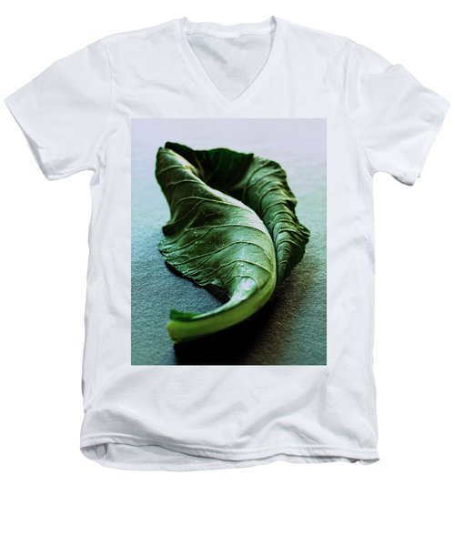 A Collard Leaf Men's V-Neck T-Shirt