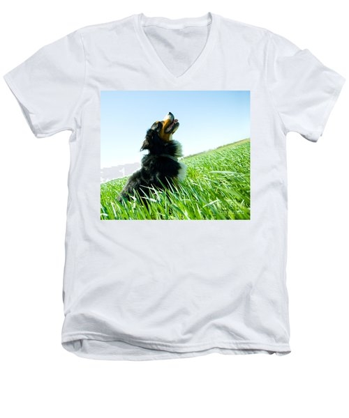 A Cute Dog On The Field Men's V-Neck T-Shirt by Michal Bednarek