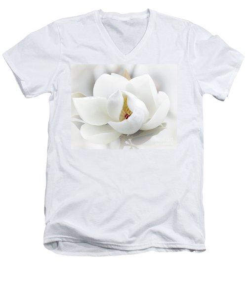 A Peek Inside Men's V-Neck T-Shirt