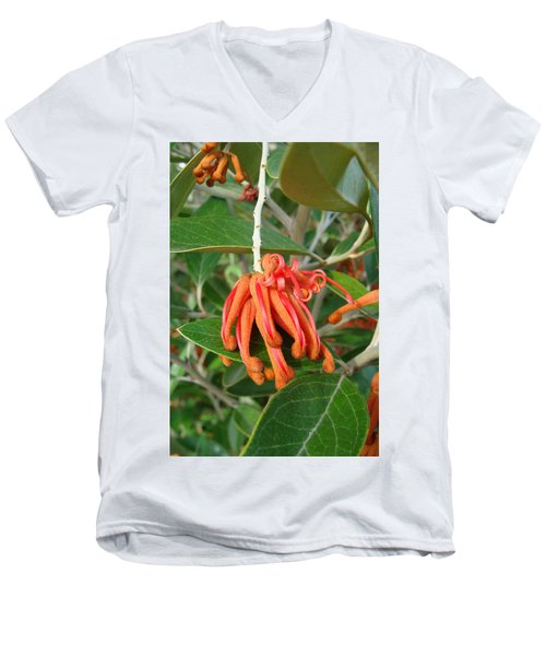 Men's V-Neck T-Shirt featuring the photograph Adaptable Exotic by Cheryl Hoyle