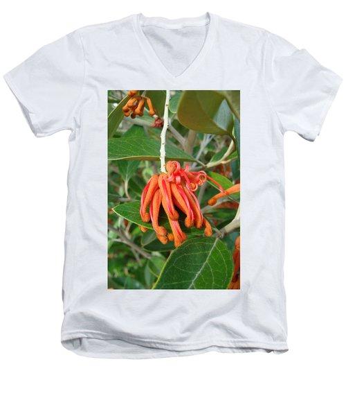 Adaptable Exotic Men's V-Neck T-Shirt by Cheryl Hoyle